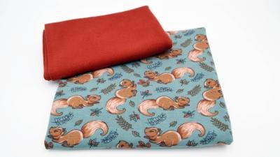 Babyset Eichhörnchen, DIY-Nähset Babykleidung mit Bündchen